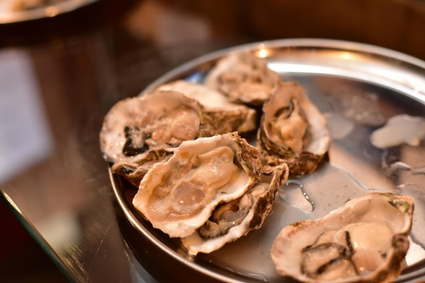 Oysterパーティ写真②